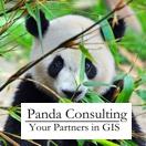 Panda Consulting