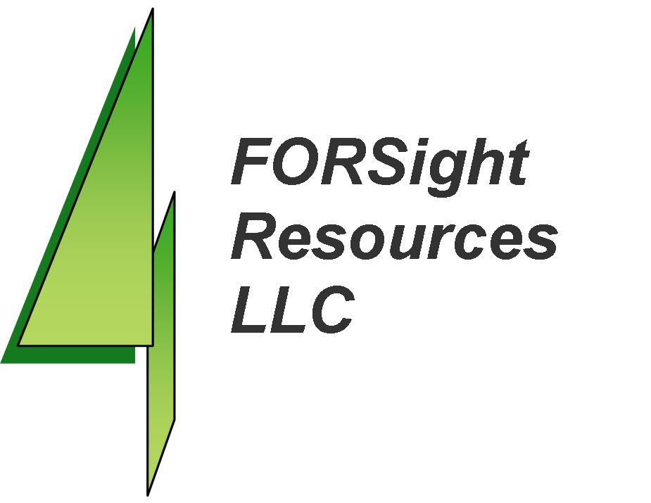 FORSight Resources LLC