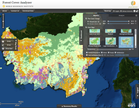 WRI Forest Cover Analyzer