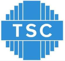 TECHNOLOGY SERVICE CORP
