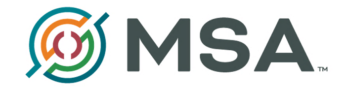 MSA Professional Services