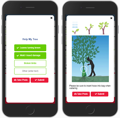 DDOT DC Tree Watering Application