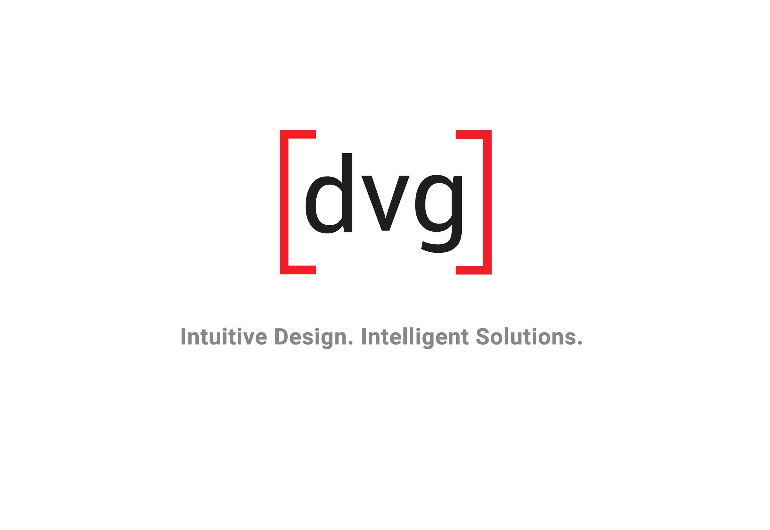 DATA VISION GROUP LLC