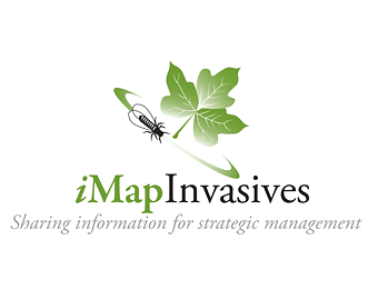 iMapInvasives
