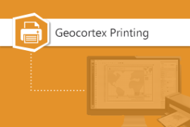 Geocortex Printing